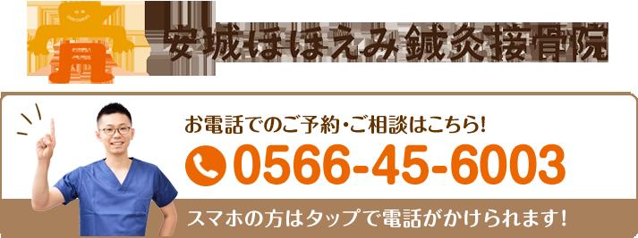 安城ほほえみ鍼灸接骨院 0566-45-6003